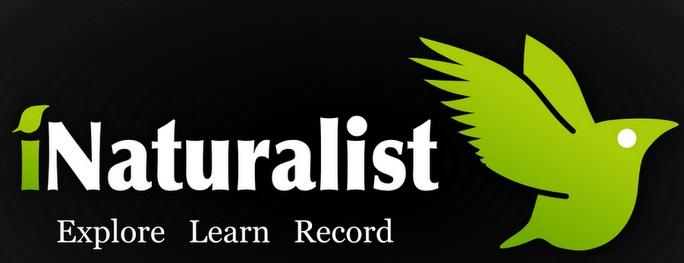Mentsd meg az állatokat az okostelefonod segítségével: Project Noah, iSpot, iNaturalist