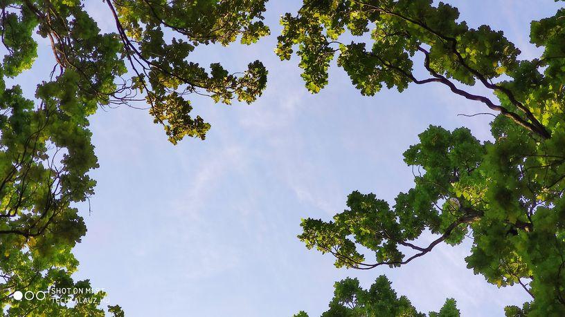 xiaomi mi 9t teszt kamera fotó fénykép